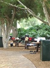 Einheimische in Tampa Wasserpark