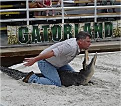 Gatorland Wrestling